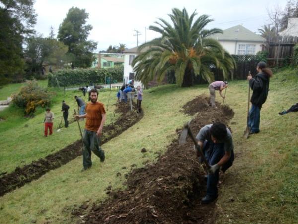 Swales Dug. Image Source: Planting Justice