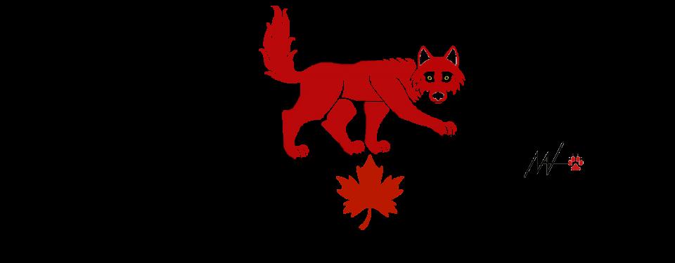 Canadian Mutt